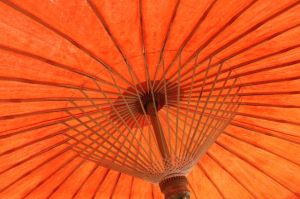 Orange parasol from below