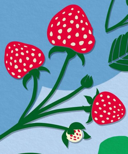 a-storm-strawberries_b_crop